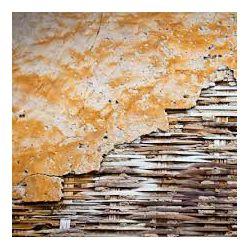 Click Props Background Vinyl with Print Bamboo Wall 1.52x2.44m studijska foto pozadina s grafikom