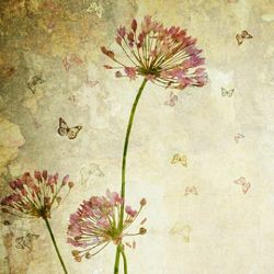 Click Props Background Vinyl with Print Flower Distressed 1.52x2.44m studijska foto pozadina s grafikom