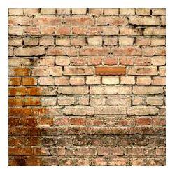 Click Props Background Vinyl with Print Old Rural Brick Wall 1.52x2.44m studijska foto pozadina s grafikom