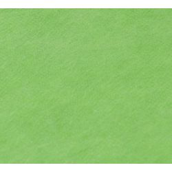 Falcon Eyes Fantasy Cloth FC-09 3x6m Chroma Green zelena transparentna studijska pozadina od sintetike Non-washable