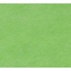 Falcon Eyes Fantasy Cloth FC-09 3x6m Chroma Green zelena transparentna studijska pozadina od sintetike Non-washable