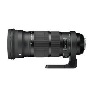 Sigma 120-300mm f/2.8 DG OS HSM Sport telefoto objektiv za Nikon FX zoom lens 120-300 F2.8 2.8 120-300/2,8 (173955)