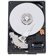 WD 320GB SATA-6Gb 5400rpm 8MB, 7mm